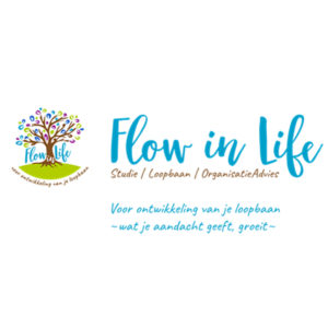Flow in Life